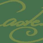 Castens logo